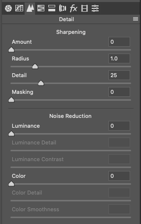 Photoshop Details Tab within ACR