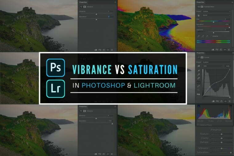 The difference between Vibrance vs Saturation